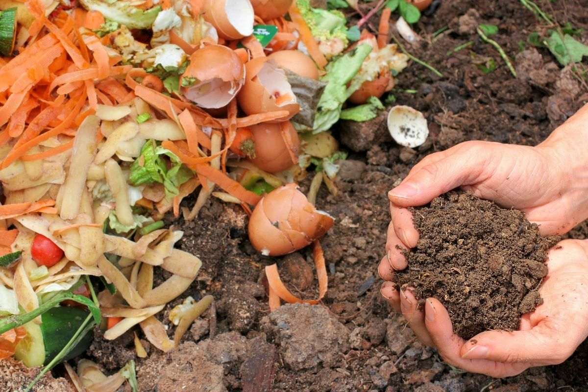 Benefits Of Composting & How To Get Started