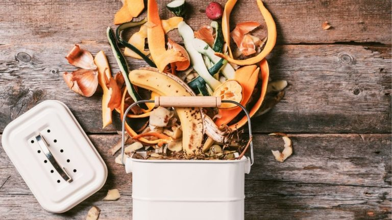 What is Bokashi Composting? (Everything You Should Know!)