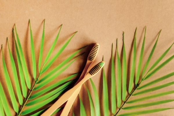 bamboo toothbrushes with brown and green bristles