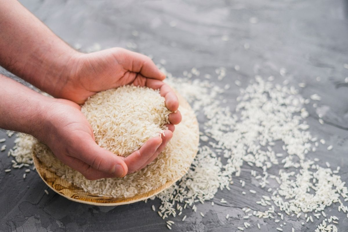 Can You Compost Rice How to Recycle Your Leftover Rice