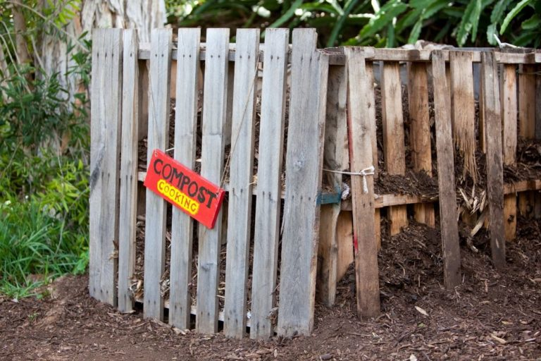 How To Hide A Compost Bin (with Style)