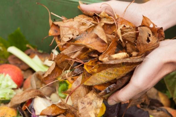 what can you add to compost