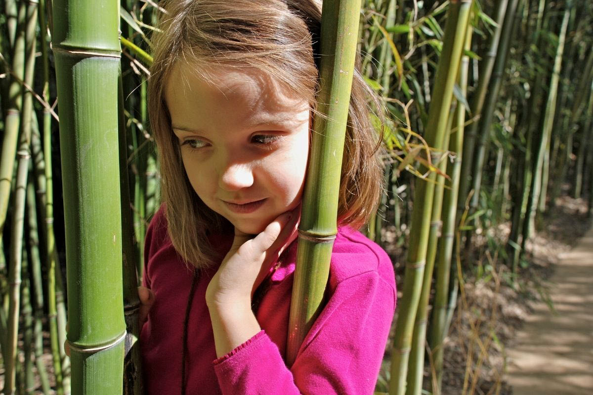 can you compost bamboo
