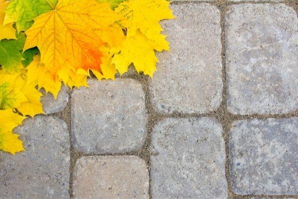 maple leaves sand patio pavers