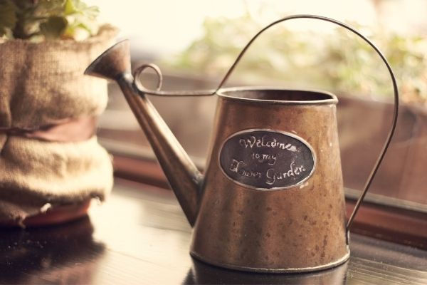 vintage watering can for home garden