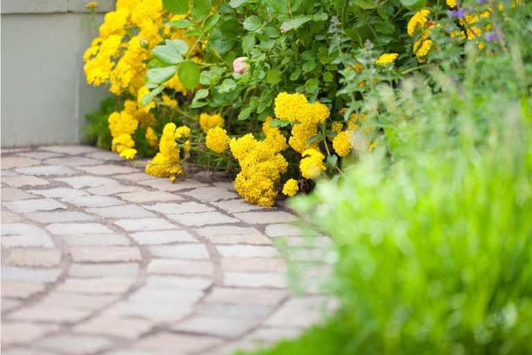 Top 6 Best Sand for Pavers — Most Recommended Paver Joint Fillers for Your DIY Project