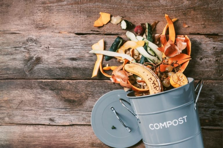 Ultimate Guide to the Best Compost Bins   Top 10 Picks for 2021