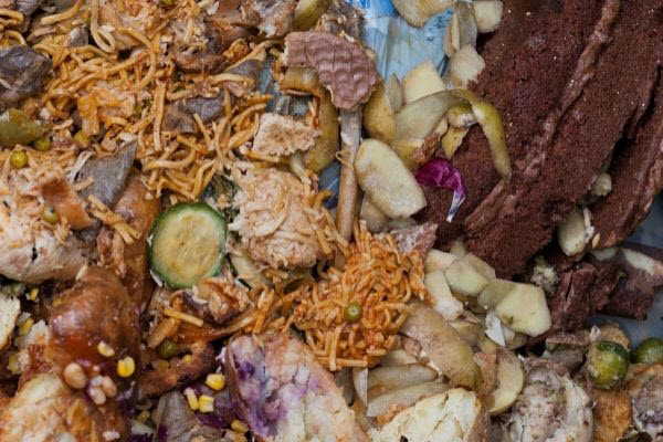 food waste diverted to compost