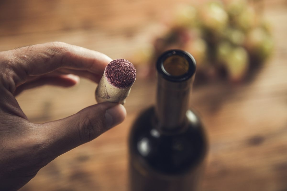 Are Corks Compostable (It's more than just a wine stopper!)