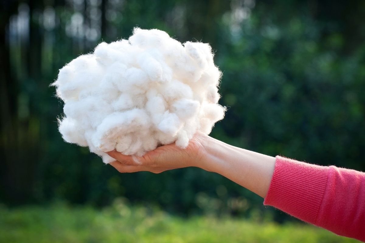 Composting Ideas: Can Cotton Be Composted?