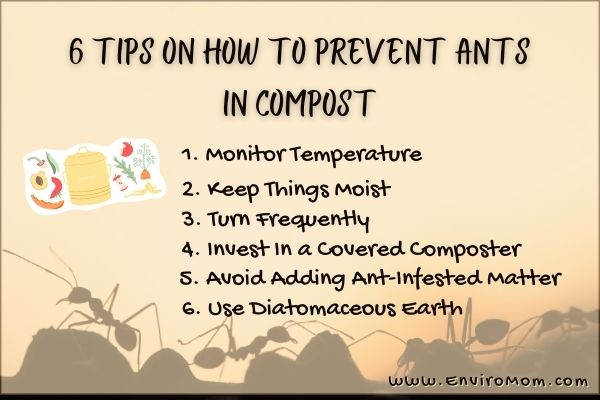 How To Prevent Ants In Compost – Infographic