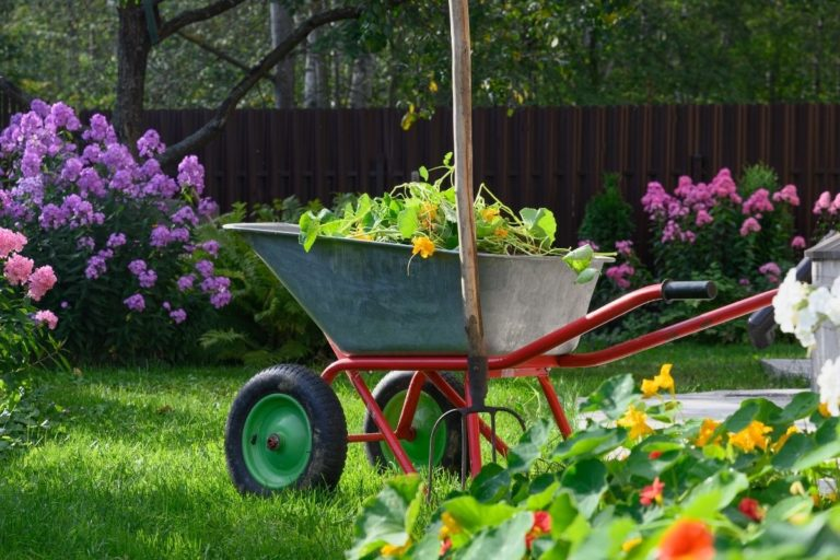 Top 7 Best Pitchforks for Compost: Mix it Up!