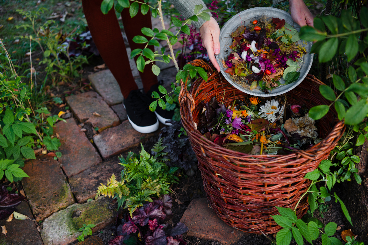 Types of Compost Containers: 5 Varieties You Should Know About