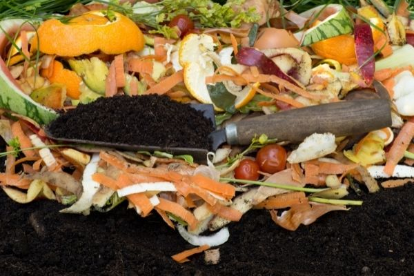 kitchen leftovers compost soil