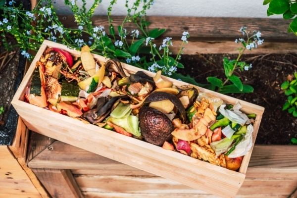organic waste in wooden crate