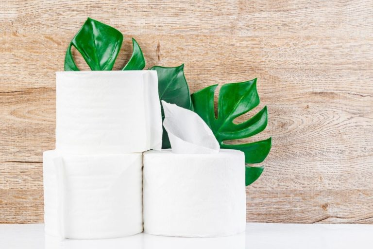 The Best Eco-Friendly Toilet Paper To Try In 2021
